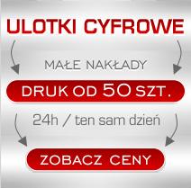 Wydrukuj ulotki w Toruniu w małych ilościach.